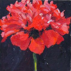 Beautiful red poppy painting