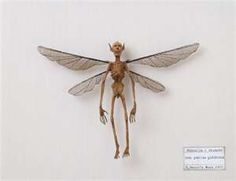 Specimens of Mythological Creatures Displayed in Japanese Museum ...