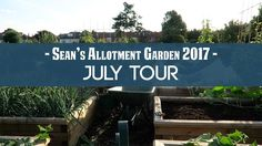 Sean's Allotment Garden #259: July Tour 2017 A walk around the allotment garden at the start of July on a rather hot day. Article I mentioned about sunburn http://ift.tt/2tVmo4R Check out my blog at http://seanjcameron.com which also includes guides on how to grow vegetables herbs flowers and fruit.  My Instagram - http://ift.tt/1N2gimV  My FaceBook Page - http://ift.tt/2rpMlZc  My Twitter - http://twitter.com/seanjcameron Support these videos by donating to the Patreon page…
