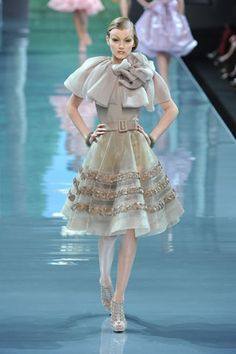 Christian Dior Fall 2008 Couture - Look 28
