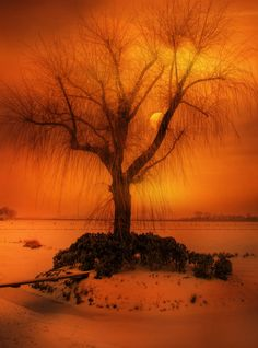 late winter by Patrick Strik on 500px