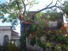 Tornado en Villa Luro