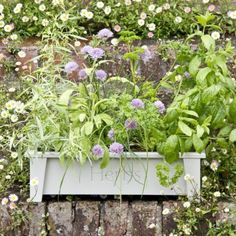 1000 images about garden storage trugs on pinterest boots store