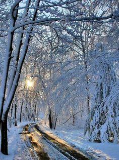 Sunrise Rockford, Illinois