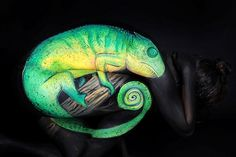 This is not a chameleon. This is body art. See if you can see the human in the photograph... amazing-body-art-5-7