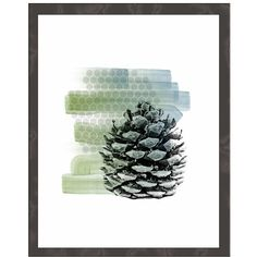 Pinecone Art Print, Rustic Botanical Modern Decor, Minimalist Nature... ($12) ❤ liked on Polyvore featuring home, home decor and wall art