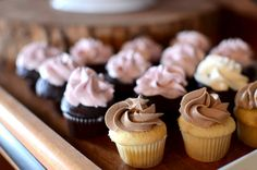 Mini Cupcakes topped with buttercream by Fin Gateau