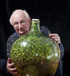 bottle garden 10