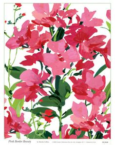 Pink Border Beauty Posters by Martha Collins at AllPosters.com