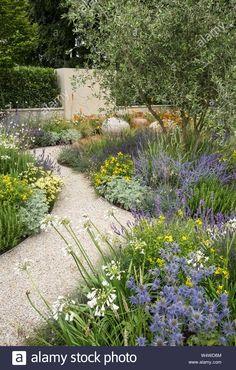 House Landscape, Landscape Design, Garden Design, Front Garden Landscape, Gravel Garden, Garden Plants, Gravel Front Garden Ideas, Back Gardens, Outdoor Gardens