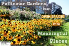 What can you tell me about where you live? Beyond the address, what makes the space you inhabit, the place that you live. Explore this new article from Habitat Network and let citizen-science projects help you re-discover you own backyard.