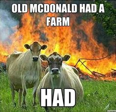 Old MacDonald had some sociopath cows.