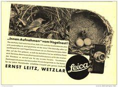 Original-Werbung/Inserat/ Anzeige 1933 - LEICA KAMERA / LEITZ WETZLAR / MOTIV VOGELNEST - ca. 140 x 110 mm