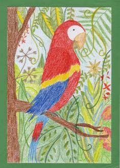 Příroda Parrot, Artist, Painting, Animals, Parrot Bird, Animales, Animaux, Artists, Painting Art