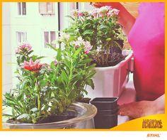 Mora em apartamento? Já pensou em ter o seu jardim particular na sacada? As ideias são infinitas! E, se não for possível, aproveite para colocar diversas plantinhas em vasos mesmo! Vai ficar lindo e com muito mais vida.