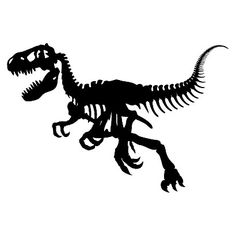 T-Rex Bones Wall Decal