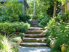 Add movement and catch light with ornamental grasses >> http://www.diynetwork.com/outdoors/cottage-style-landscapes-and-gardens/pictures/index.html?soc=pinterest