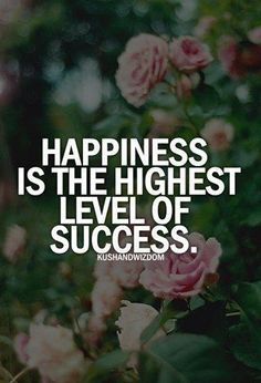 Happiness is the highest level of success. :)