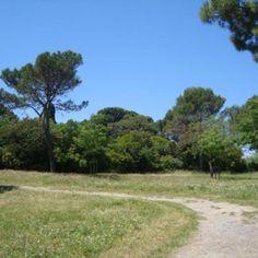 Montpellier : 3 parcs de la Ville labéllisés Eco jardin !