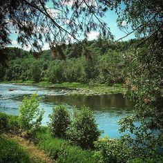 Mother of #Lithuanian rivers - #Neris #wilderness #camping #outdoor #hiking #northernbeauty