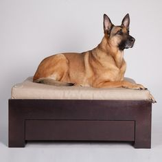 Box Bed Dark Wood, $620, now featured on Fab.