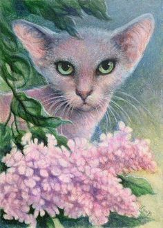[For+WEB+ACEO+Lilac+Oriental+Cat.jpg]