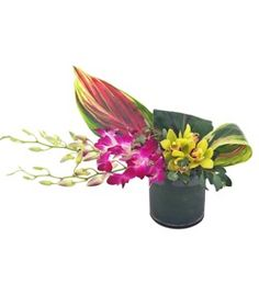 Rodeo Drive Tropical Flower Arrangement by Cactus Flower - Scottsdale AZ Florist #mother's day flowers #orchids #tropical