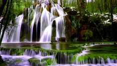Nature Rock Waterfalls Forest