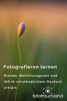 Fotografieren lernen - ich erkläre dir die Grundlagen der Fotografie in verständlichem Deutsch und lasse das Fachchinesisch weg!