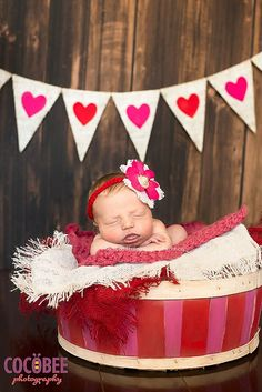 The backdrop shop - the ultimate valentine's day photography prop layering set including heart burlap banner Halloween Photography, Holiday Photography, Photography Backdrops, Newborn Photography, Photography Ideas, Valentines Day Photos, Backdrop Ideas, Banner Ideas, Baby Pictures