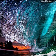A shot from late this evening with a flash. ☀ Nikon d300/sb800 flash #clarklittle #hawaii #Padgram