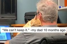 This dad who values the importance of kitty entertainment: 19 Dads Who Didn't Want A Cat And Came Around Real Fast Dog Chart, Pregnant Cat, Eyebrow Game, Come Around, Cat Dad, Kids Artwork, Back On Track, Cat Love, Baby Animals