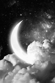 East of the Sun, West of the Moon on Pinterest | Moon, Full Moon ...