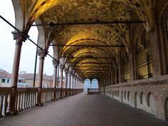 Palazzo della Ragione, Padova