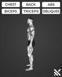 Muscle Gain Workout, Abs And Cardio Workout, Gym Workouts For Men, Gym Workout Chart, Full Body Gym Workout, Gym Workout Videos, Abs Workout Routines, Weight Training Workouts, Fitness Workouts