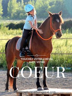 A bas les grandes claques de félicitations sur l'encolure ! Touchez votre cheval avec tout votre cœur, il vous en remerciera.  www.sellerie-ethologique.com