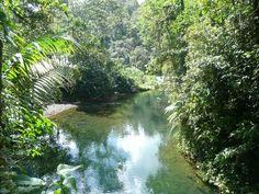 braulio carillo national park river   - Costa Rica