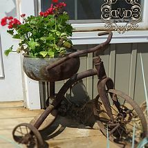Childhood tricycle turned planter!