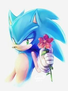Sonic the Hedgehog Sonic The Hedgehog, Silver The Hedgehog, Shadow The Hedgehog, Sonic 3, Sonic And Amy, Sonic And Shadow, Werewolf Games, Dragon Ball, Sonic Heroes