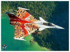 Rafale Tiger from Tburg Aircraft Parts, Fighter Aircraft, Military Jets, Military Aircraft, Modern Fighter Jets, Rafale Dassault, Photo Avion, Dassault Aviation, Air Fighter