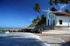 Praia dos Carneiros - Pernambuco -Brasil