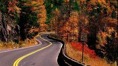 Tools to plan your autumn foliage drive in North America
