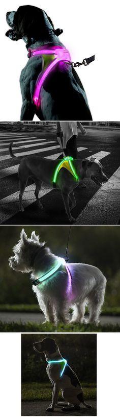 illuminated-and-reflective-dog-vest