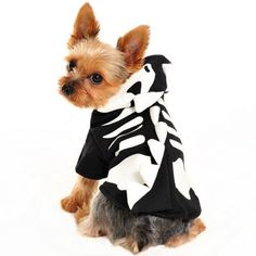 A unique Halloween costume for dogs! This Dragon Skeleton Halloween Costume comes with plenty of high quality details. The skeleton and skull design on the black fabric glows in the dark, and the whit
