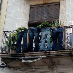 Macetas particulares en carrer Hospital El Raval Barcelona  #raval #ciutatvella #barcelona #bcn #macetas #balcones #barcelona #bcn #followforfollow