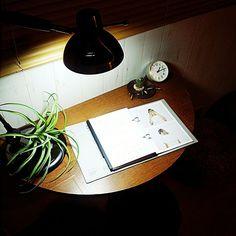 机/古い眼鏡/ニコガチャグリーン/時計/優しい男前インテリア/塩系インテリアの会…などのインテリア実例 - 2016-04-21 01:27:56   RoomClip(ルームクリップ)