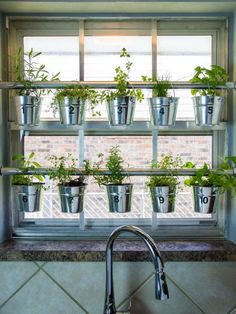 How to Make a Hanging Window Herb Garden >> www.c How to Make a Hanging Window Herb Garden >> www.c How to Make a Hanging Window Herb Garden >> www.c How to Make a Indoor Garden Apartment, Garden Design, Window Herb Garden, Hanging Herbs, Garden Windows, Herb Garden In Kitchen, Kitchen Herbs, Hgtv Garden, Indoor Plants