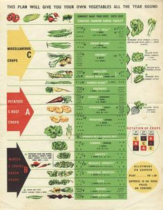 Year-round vegetables – with a sample crop rotation schedule.