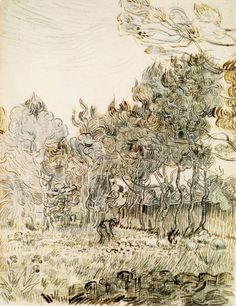 Vincent van Gogh (Dutch Post-Impressionist painter, 1853–1890) A Corner of the Garden of St. Paul's Hospital at St-Remy, 1889. Pencil, black chalk & ink, 62 x 48 cm. Tate, UK. Not on display.