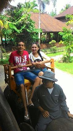 Elephant ride at bali zoo